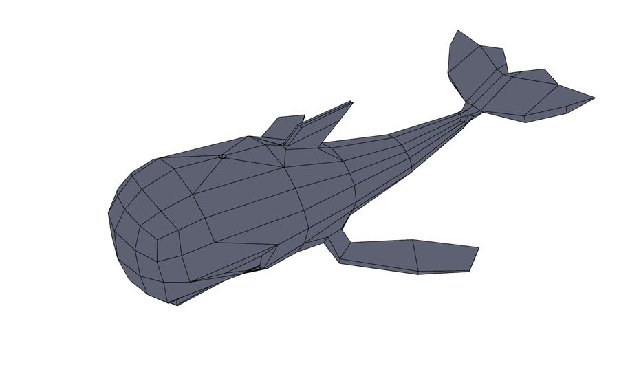 MobyDick-Wal royalty-free 3d model - Preview no. 8