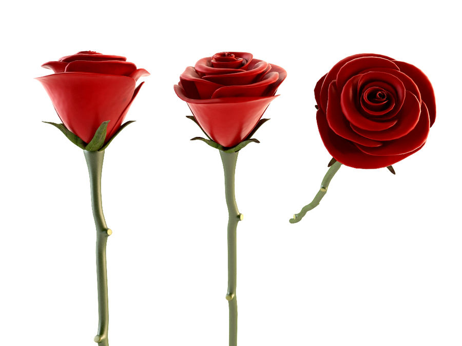 Red Roses Bouquet royalty-free 3d model - Preview no. 4