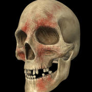 battle worn skull 3d model