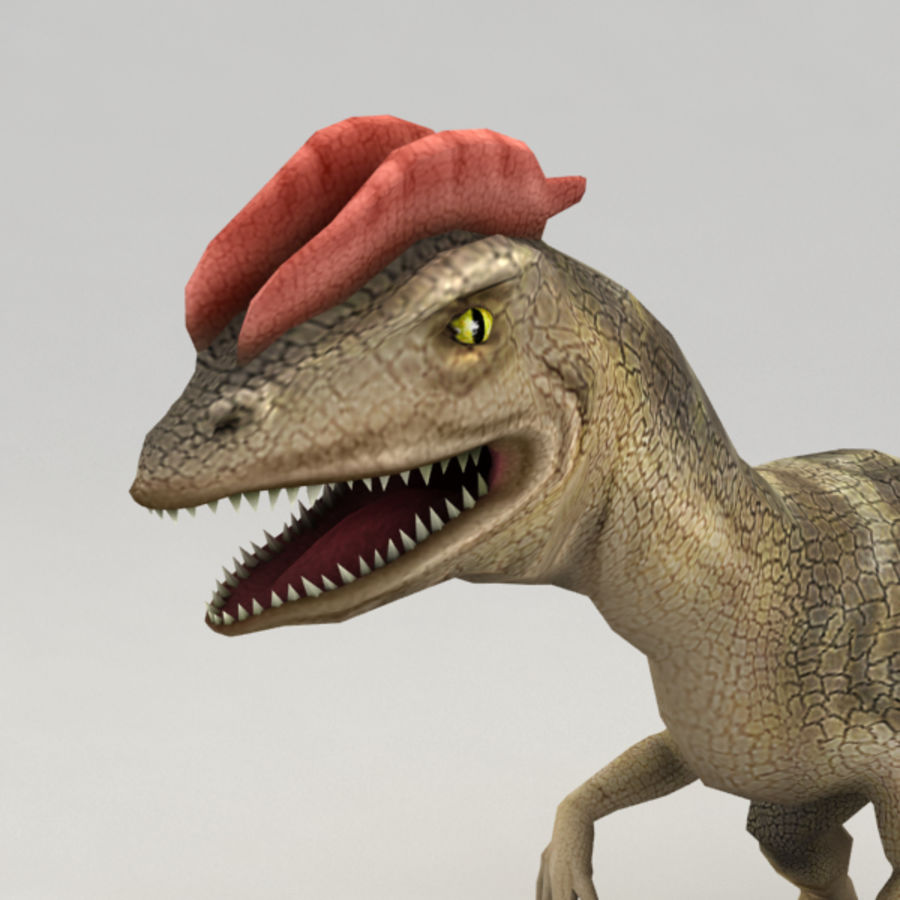 Dilophosaurus rigged royalty-free 3d model - Preview no. 5
