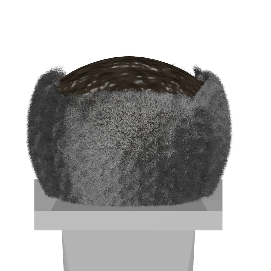 Russian Hat royalty-free 3d model - Preview no. 4