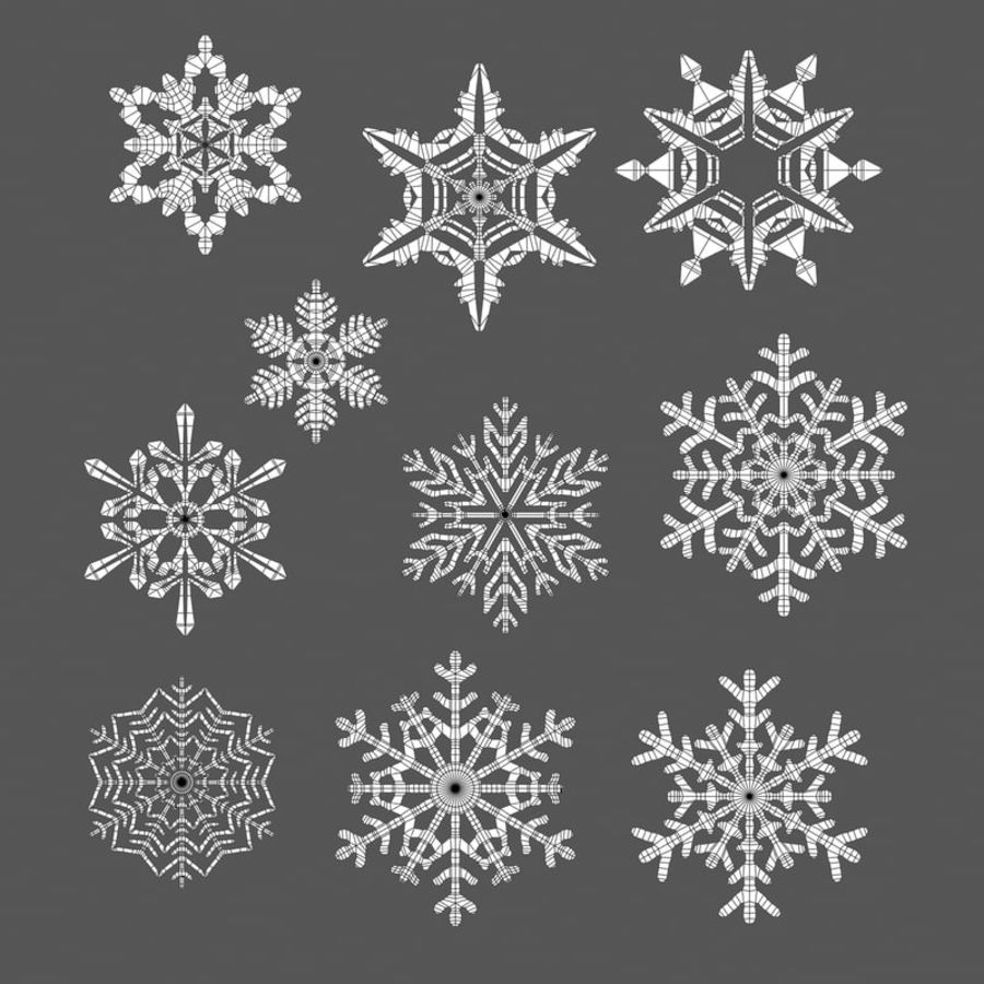 10 flocos de neve royalty-free 3d model - Preview no. 7