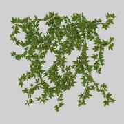 Wall Hanging Plant - D 3d model