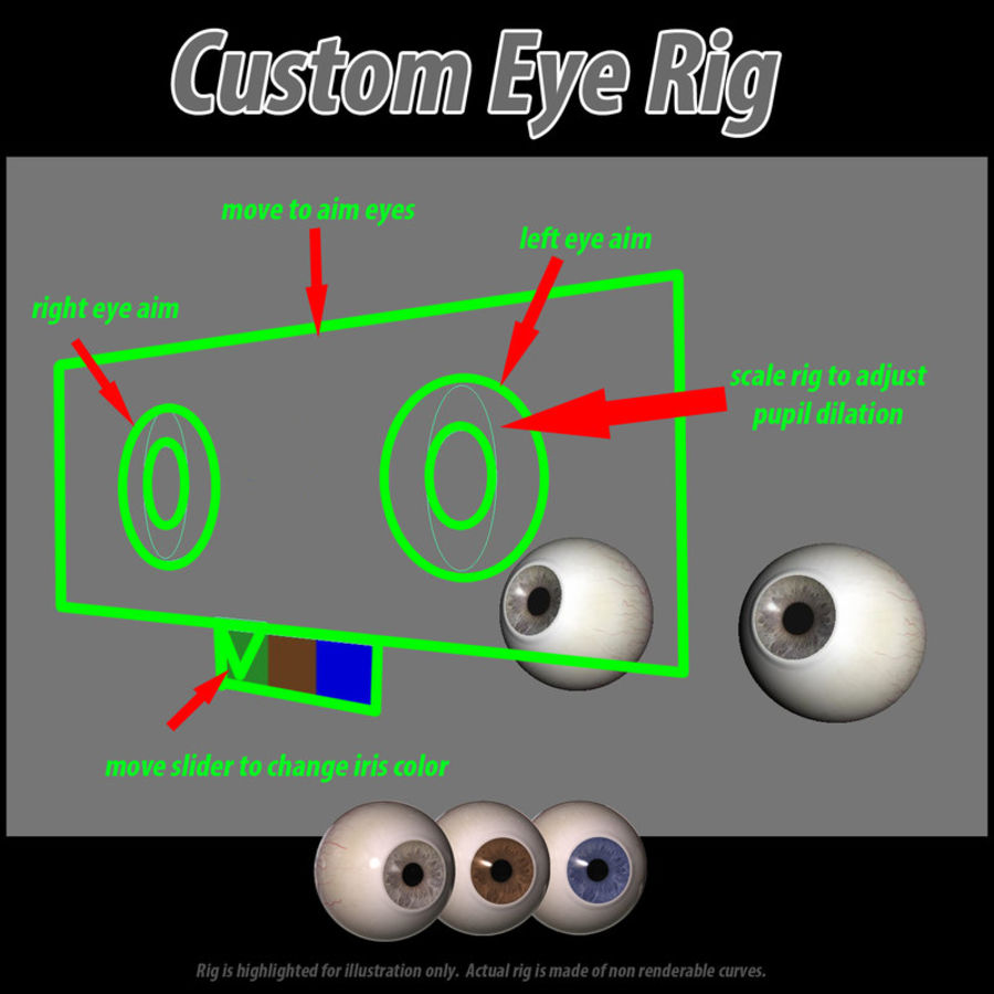 Rigged Eyes royalty-free 3d model - Preview no. 7