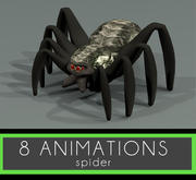 Spinne 8 Animationen 3d model