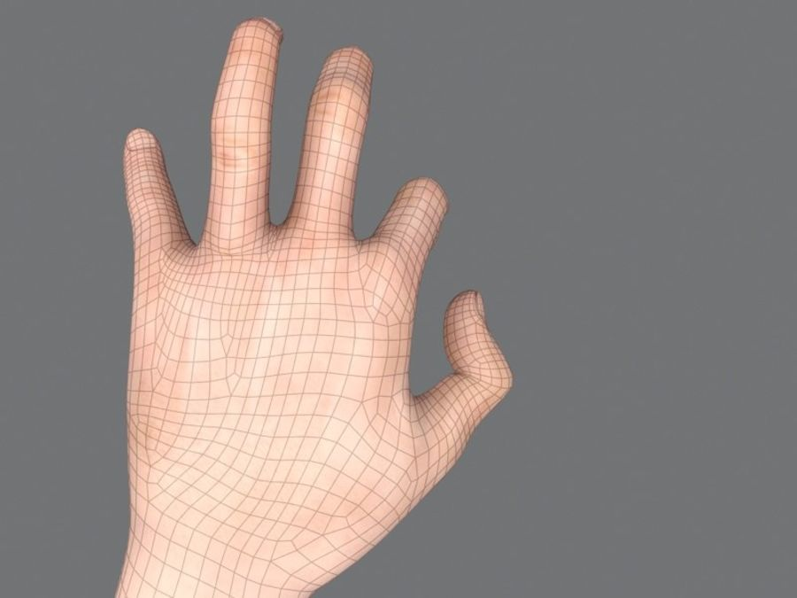 Rigged Hand royalty-free 3d model - Preview no. 5