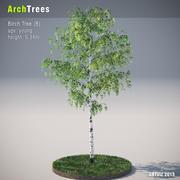 ArchTrees Birkenbaum (B) 3d model