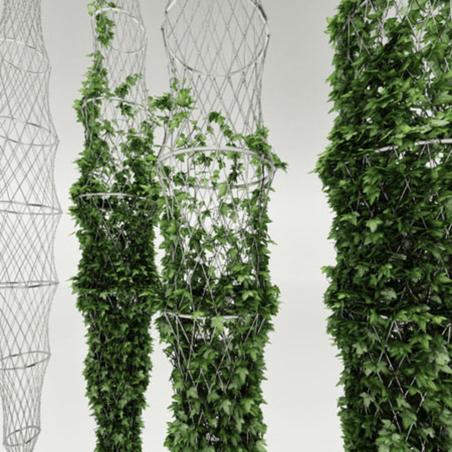 Ivy basket royalty-free 3d model - Preview no. 1