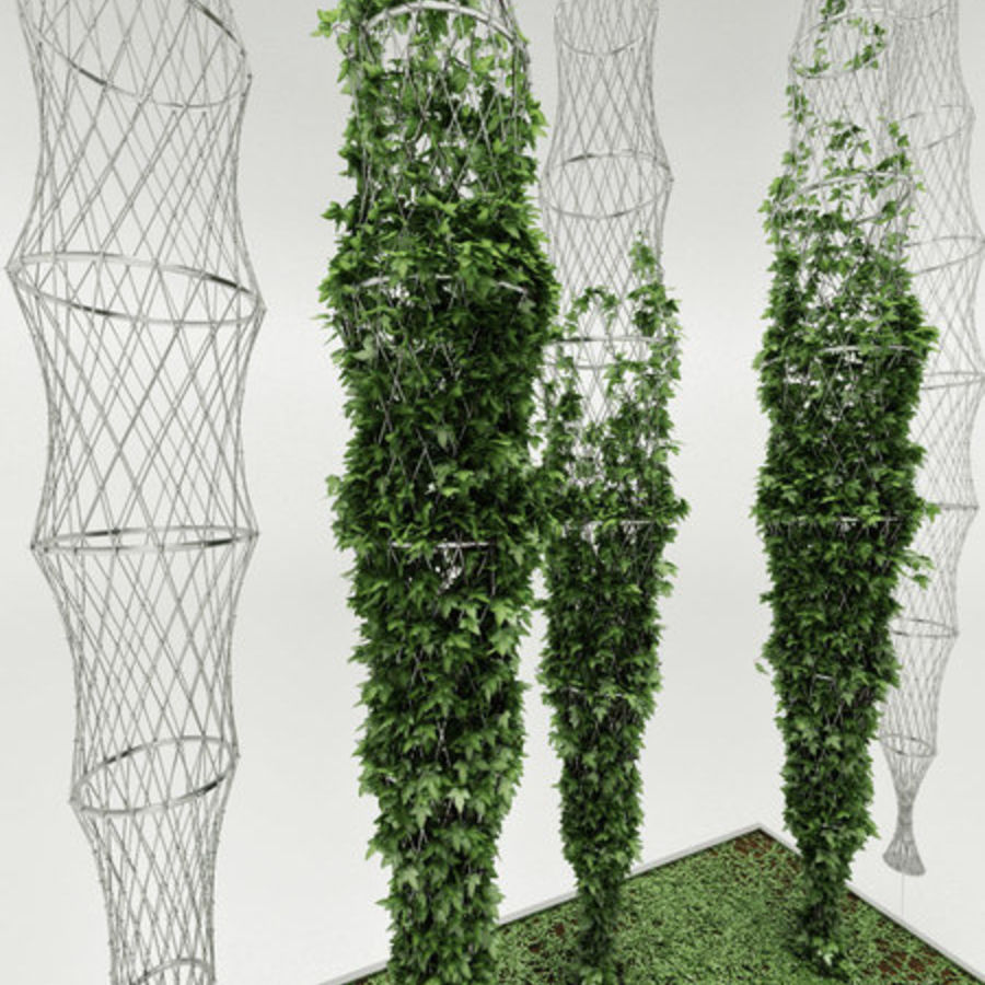 Ivy basket royalty-free 3d model - Preview no. 4