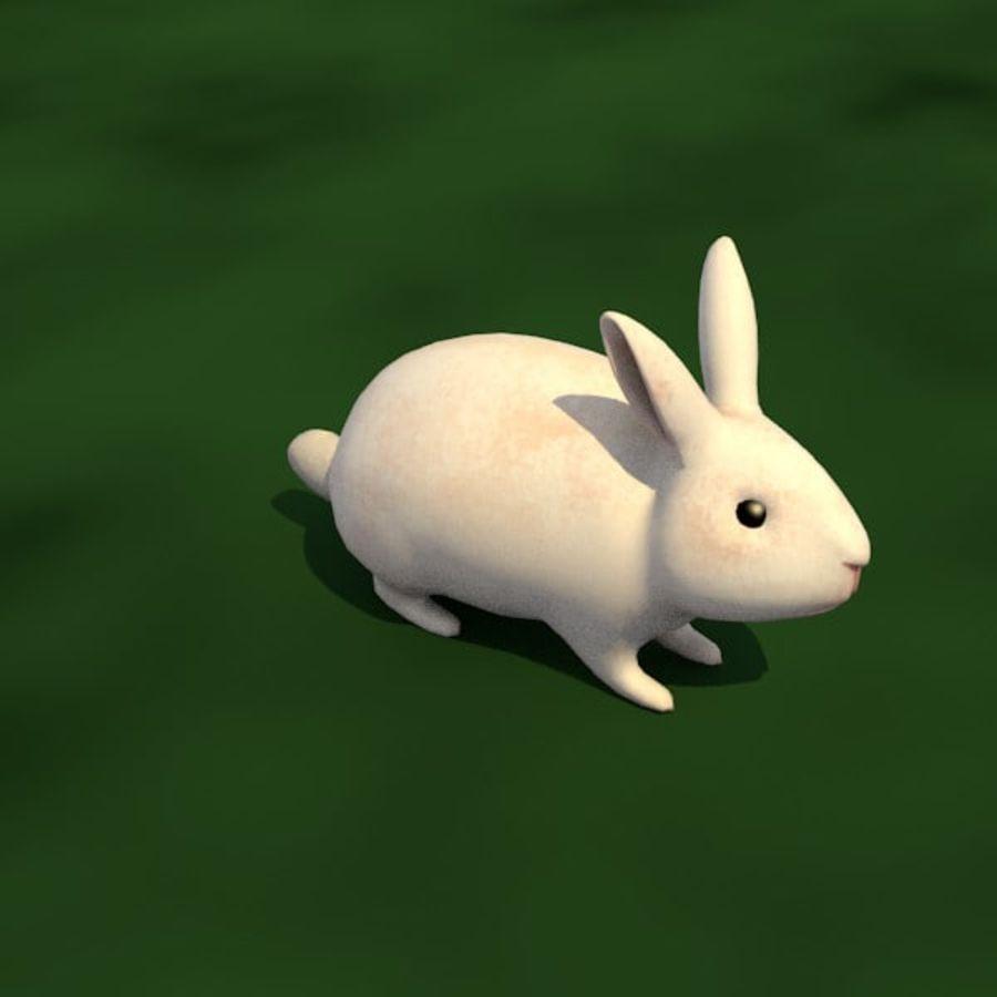 Rabbit royalty-free 3d model - Preview no. 1