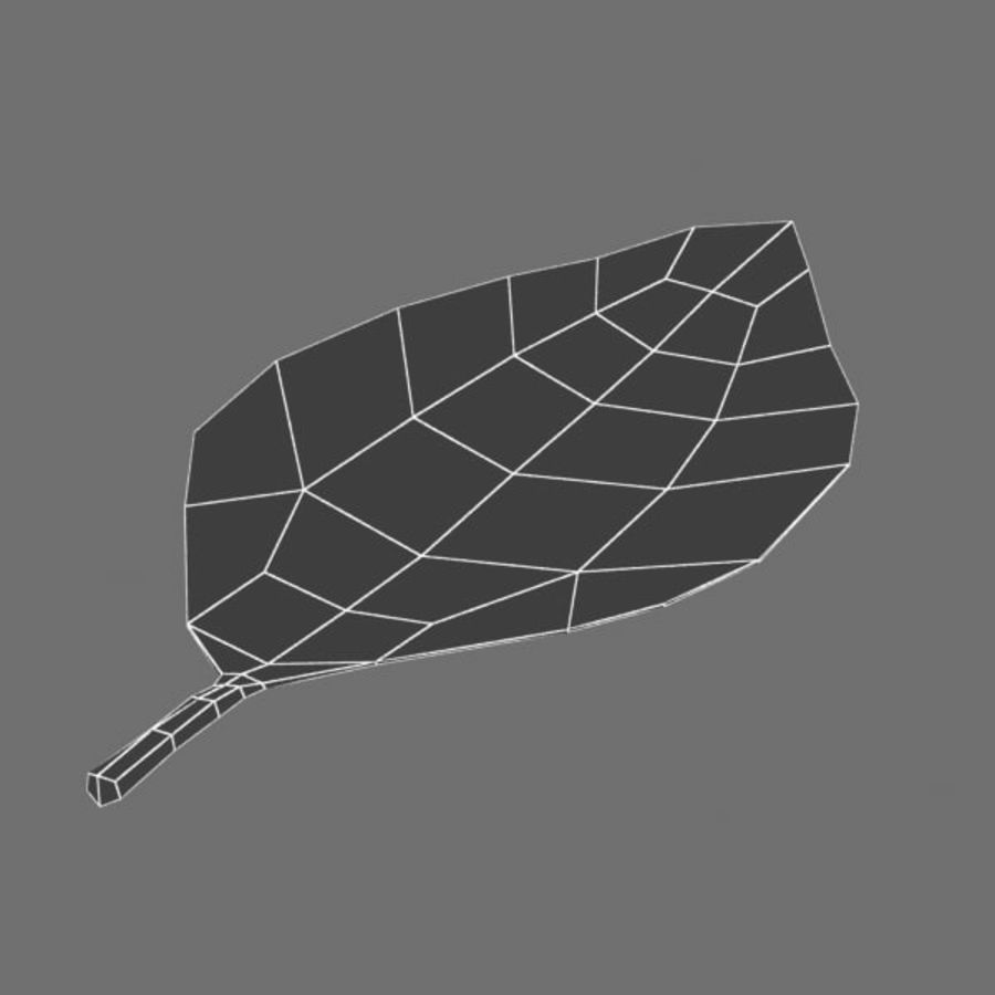 Leaf 02 royalty-free 3d model - Preview no. 4
