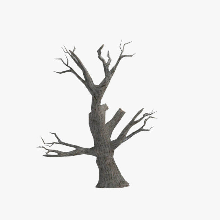 Tree royalty-free 3d model - Preview no. 1