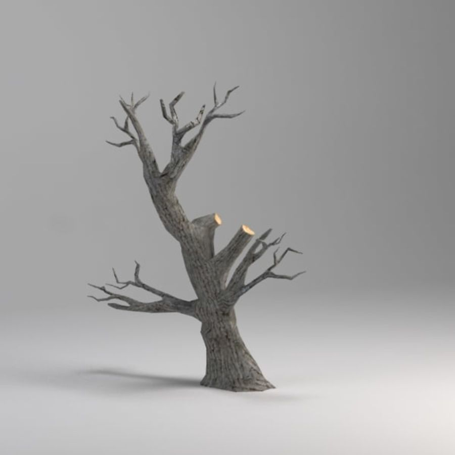 Tree royalty-free 3d model - Preview no. 3