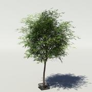 Tree v3 low-poly 3d model