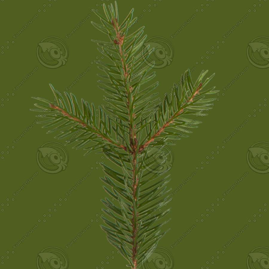 Christmas Tree M-01 royalty-free 3d model - Preview no. 10