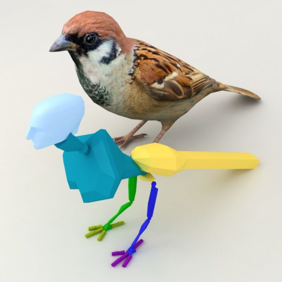 Sparrow Animated royalty-free 3d model - Preview no. 6