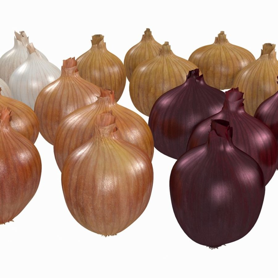 Onions royalty-free 3d model - Preview no. 2