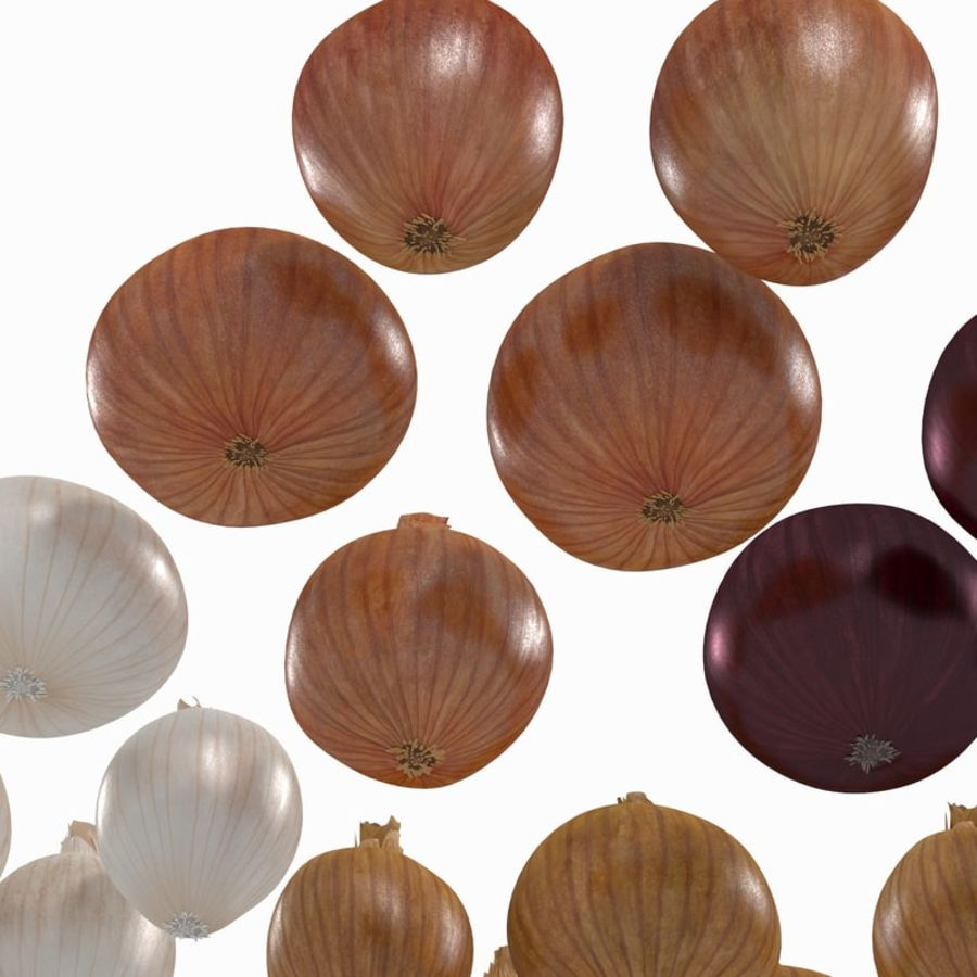 Onions royalty-free 3d model - Preview no. 3