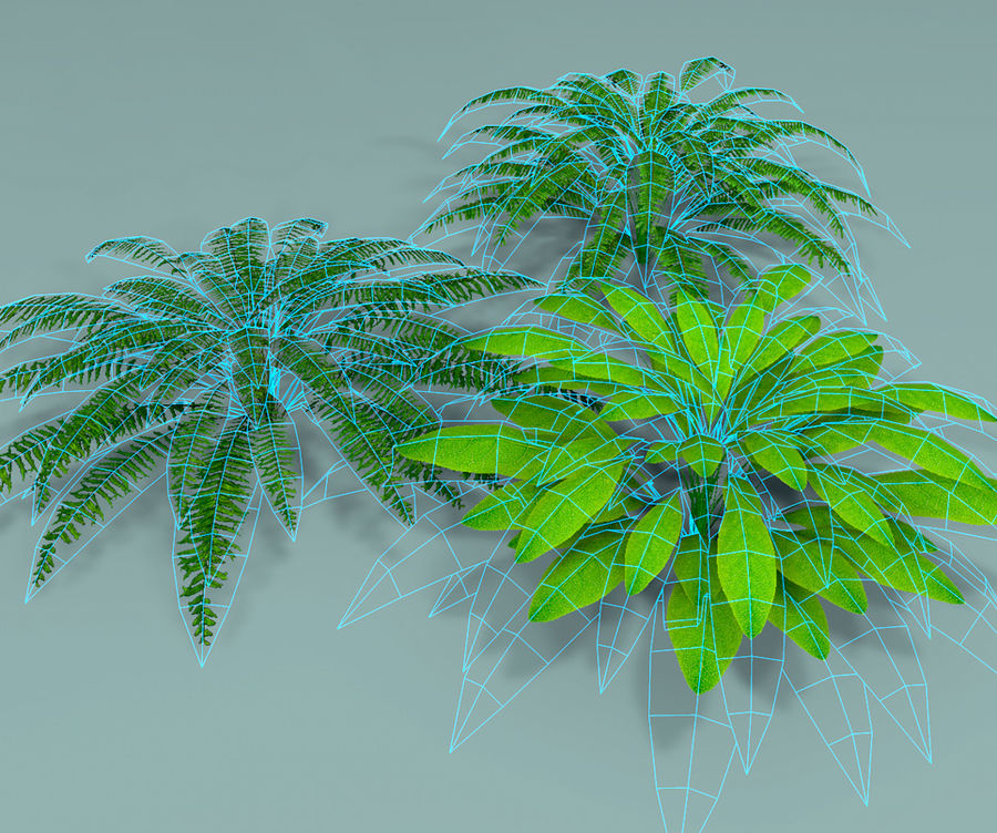 Plant Fer royalty-free 3d model - Preview no. 7