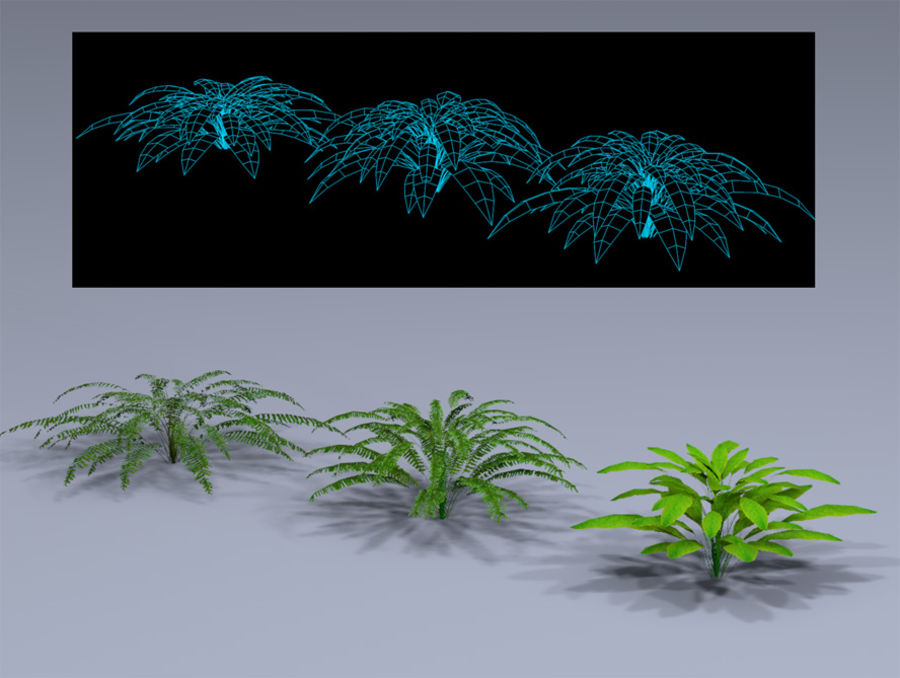 Plant Fer royalty-free 3d model - Preview no. 3