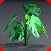 Home Plants textured 3d model