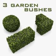 Buissons de jardin 3d model