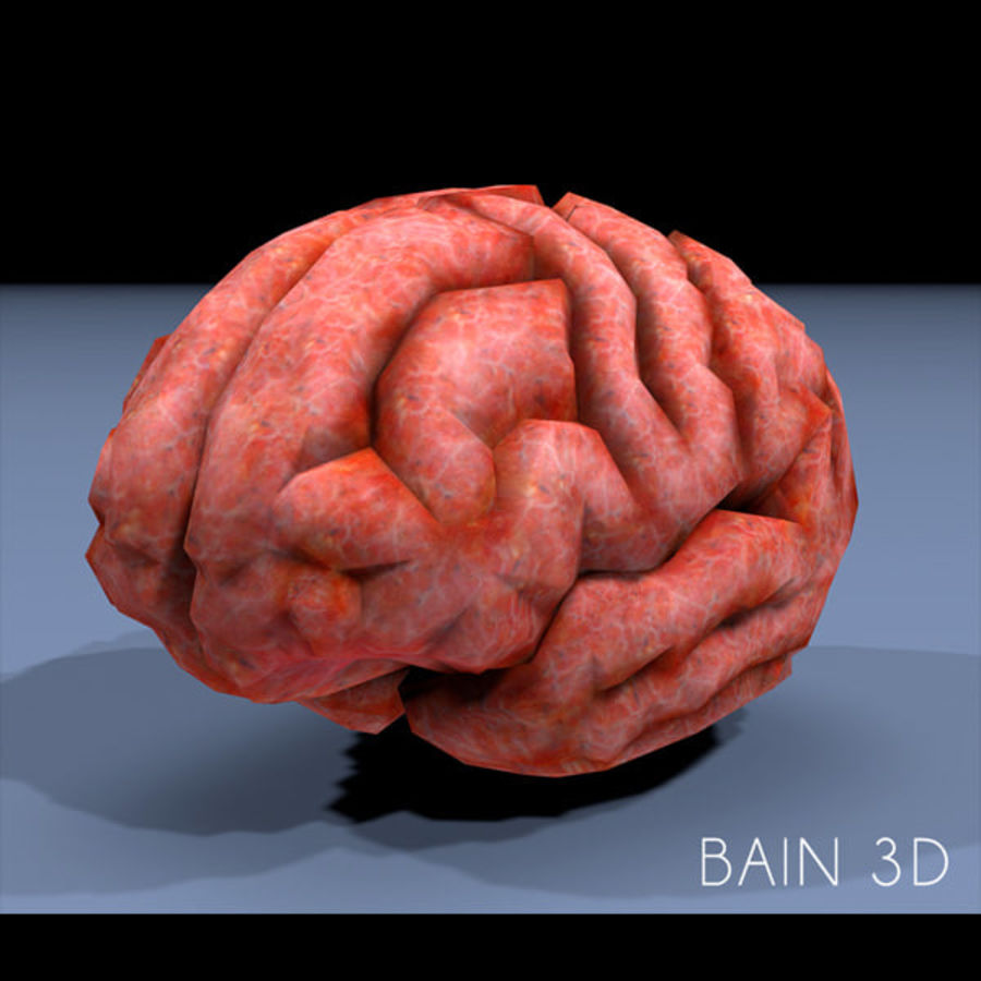 brain low poly royalty-free 3d model - Preview no. 2