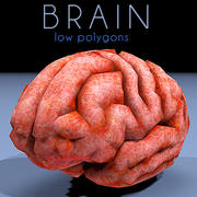 brain low poly 3d model