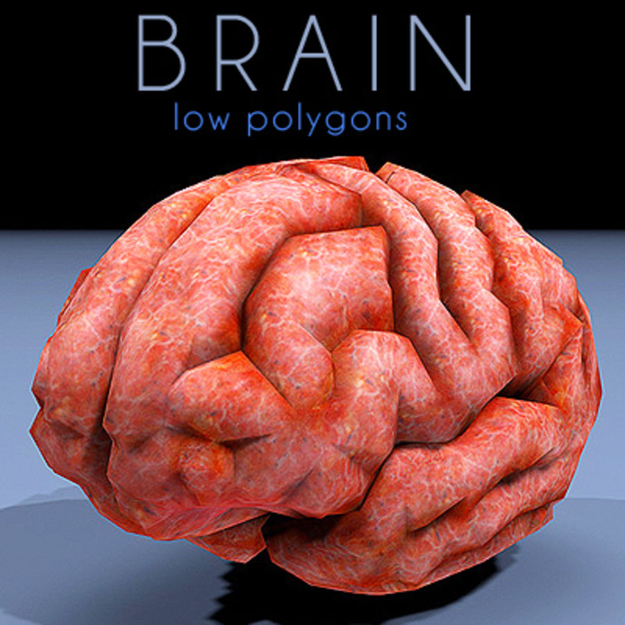 brain low poly royalty-free 3d model - Preview no. 1