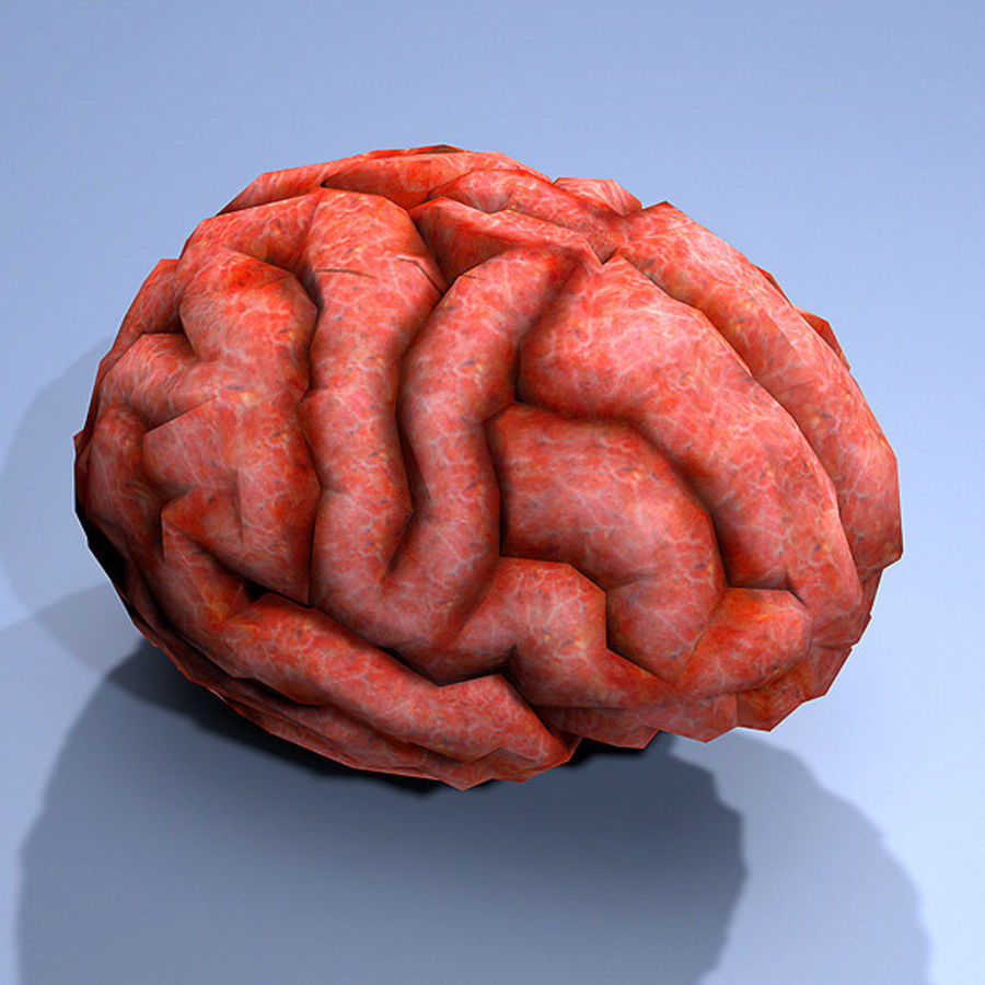 brain low poly royalty-free 3d model - Preview no. 3