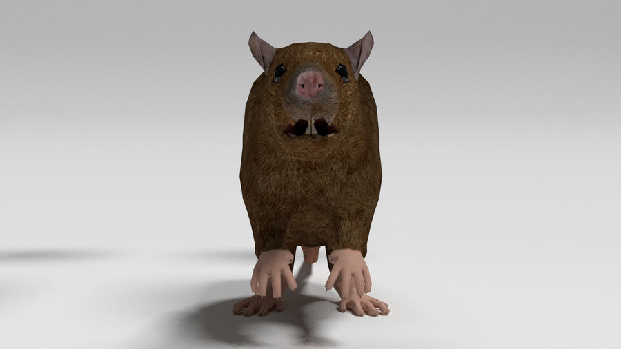 Low Poly Rat royalty-free 3d model - Preview no. 2