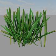 Grass 01 3d model
