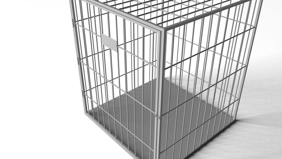 Cage royalty-free 3d model - Preview no. 3