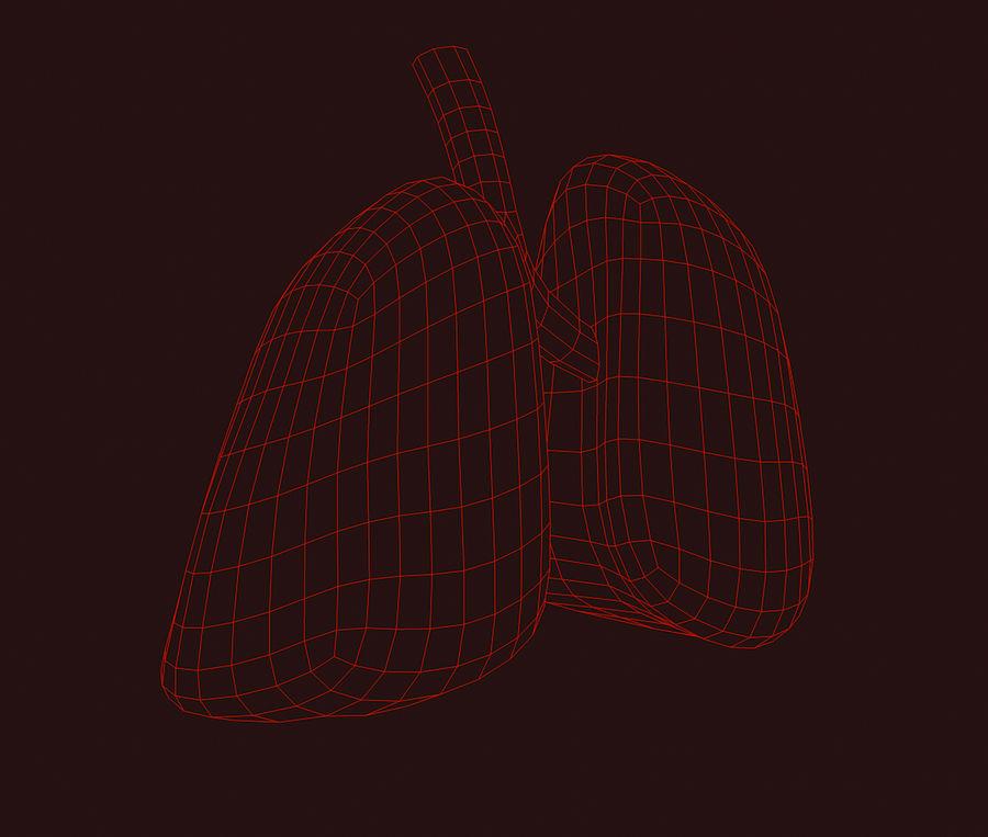纹理肺 royalty-free 3d model - Preview no. 7