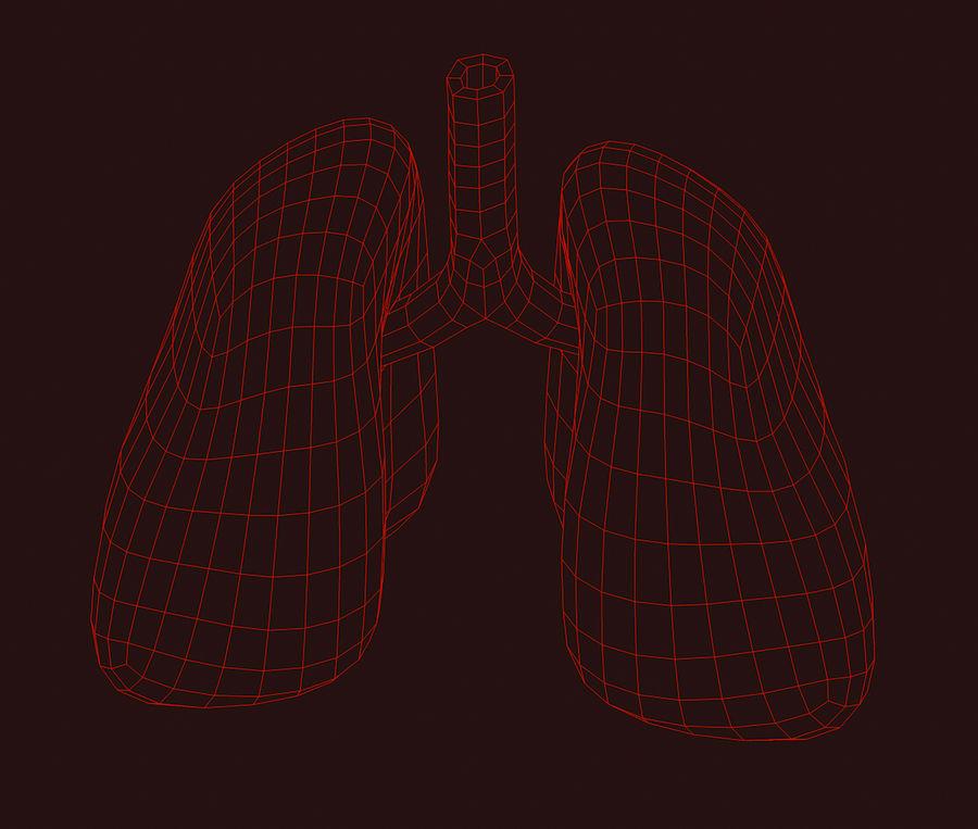 纹理肺 royalty-free 3d model - Preview no. 5