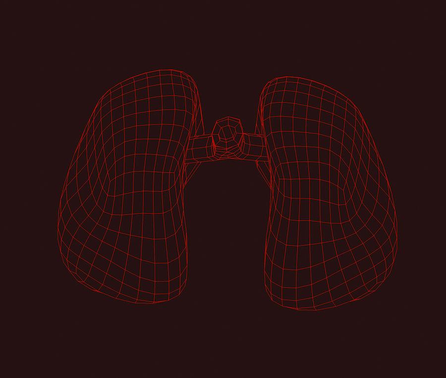 纹理肺 royalty-free 3d model - Preview no. 8