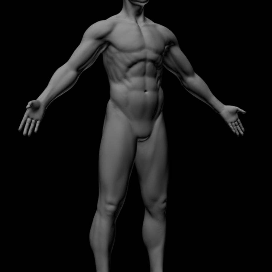 Realistic Male Body royalty-free 3d model - Preview no. 3