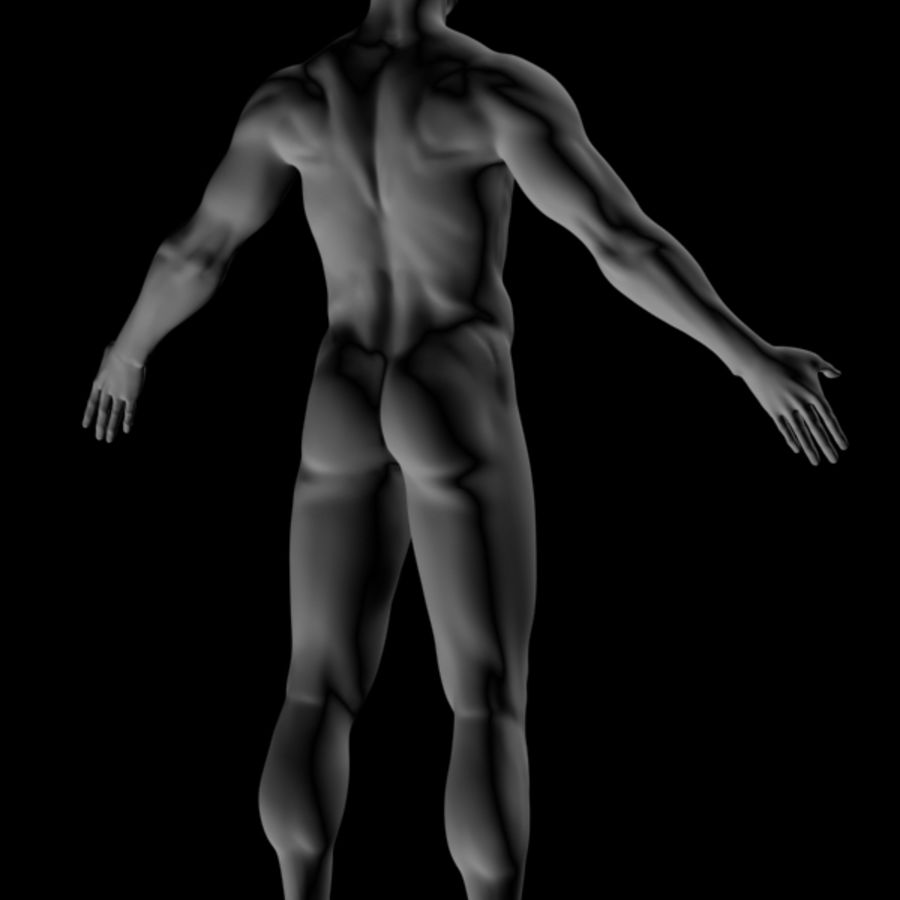 Realistic Male Body royalty-free 3d model - Preview no. 5