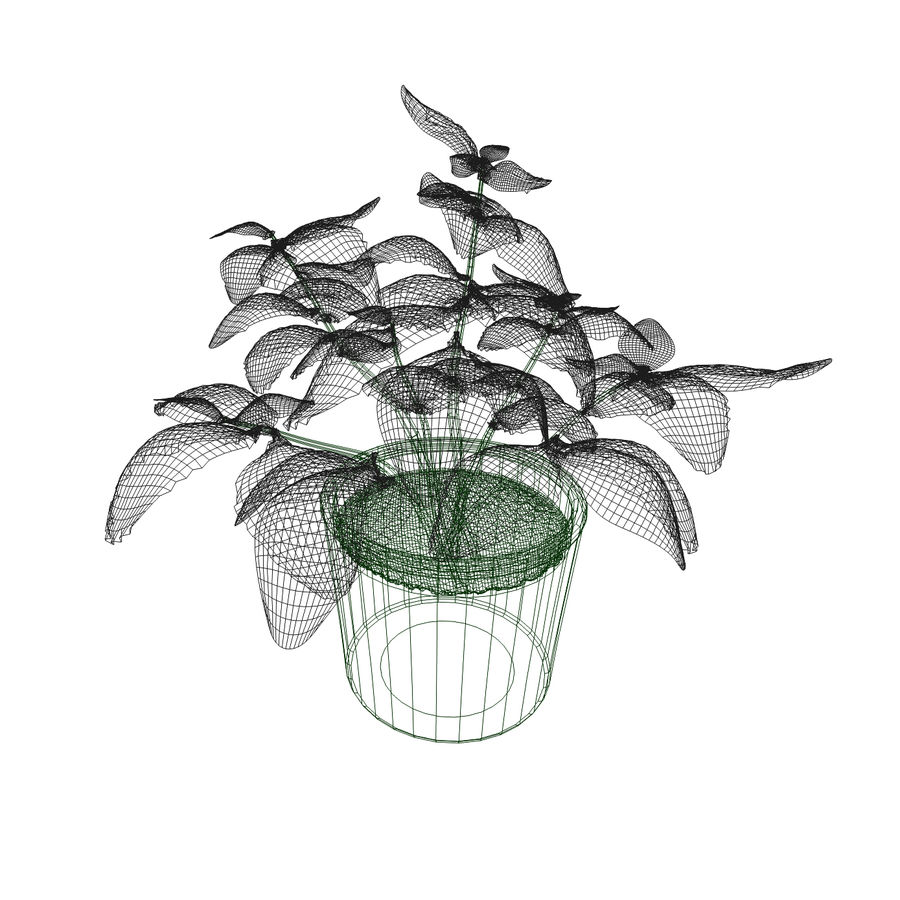 Plant in a pot royalty-free 3d model - Preview no. 4