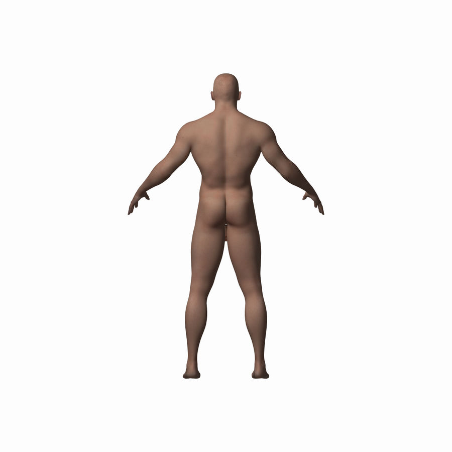 Human Male Character royalty-free 3d model - Preview no. 2