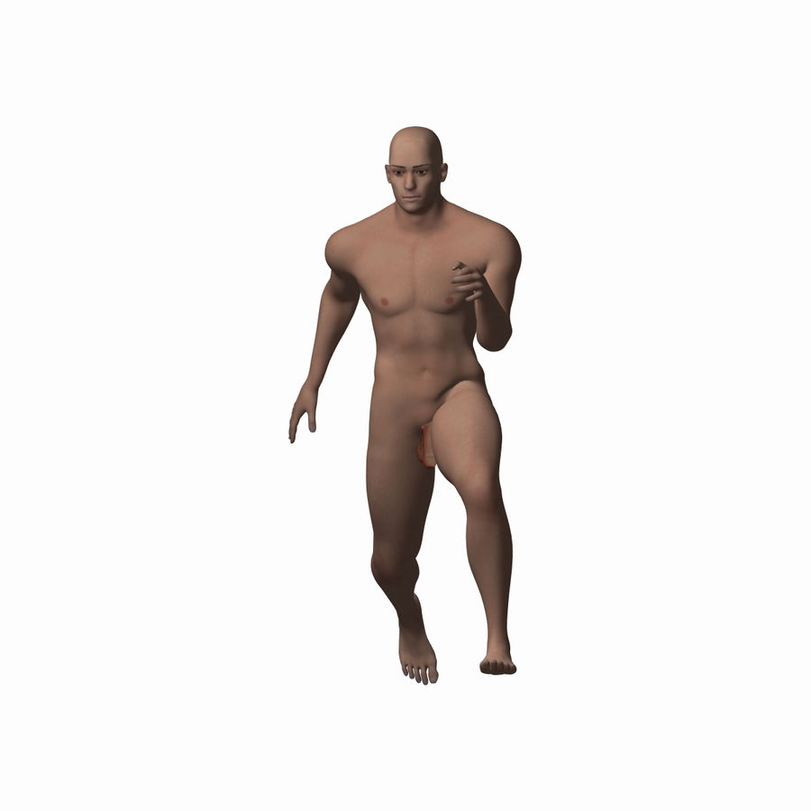 Human Male Character royalty-free 3d model - Preview no. 5