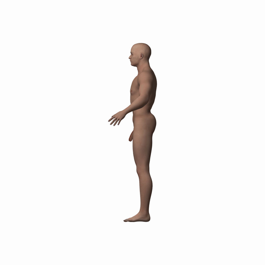 Human Male Character royalty-free 3d model - Preview no. 4