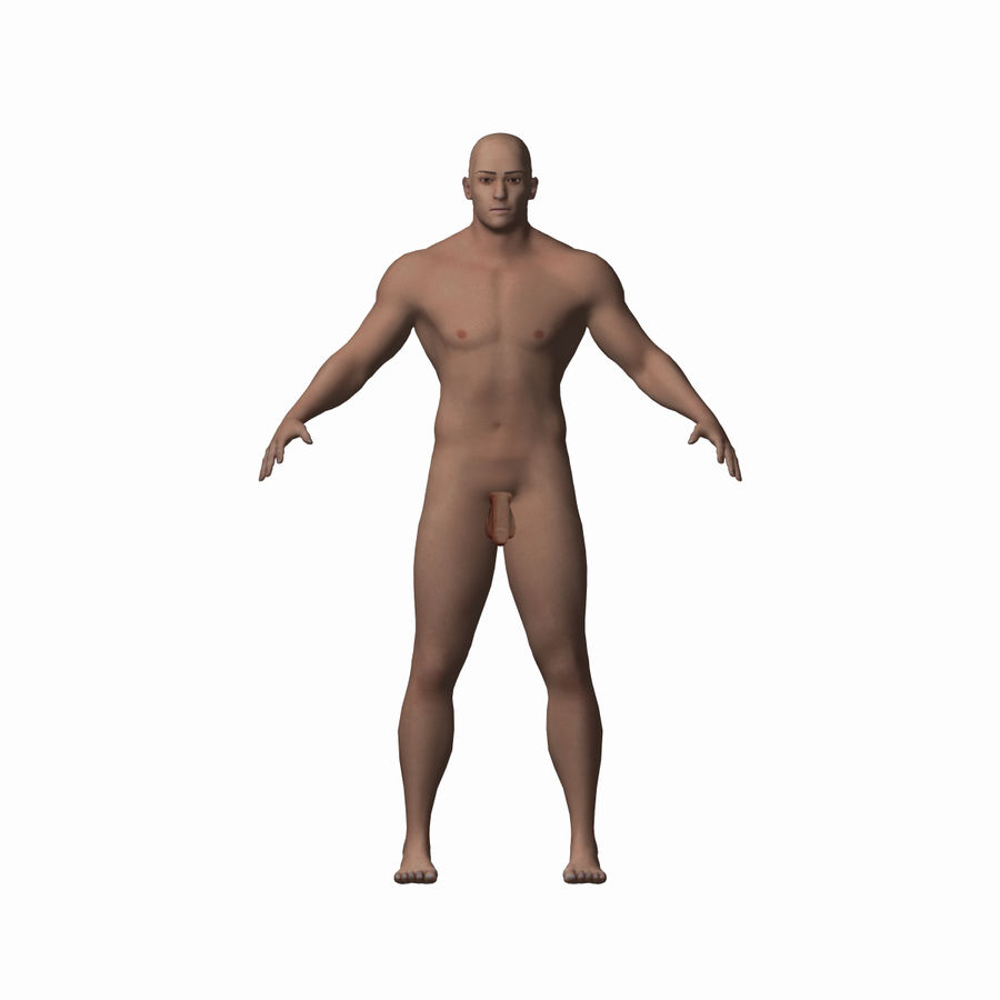 Human Male Character royalty-free 3d model - Preview no. 1