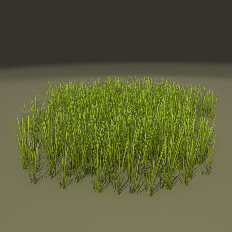 Herbe royalty-free 3d model - Preview no. 3