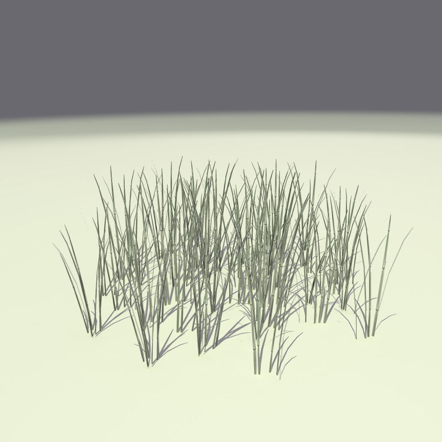 Herbe royalty-free 3d model - Preview no. 6