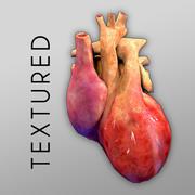 Heart Textured Bumpmap 3d model
