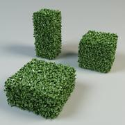 boxwood bush topiary 3d model