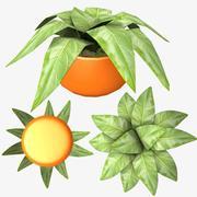Pot Plant 3d model