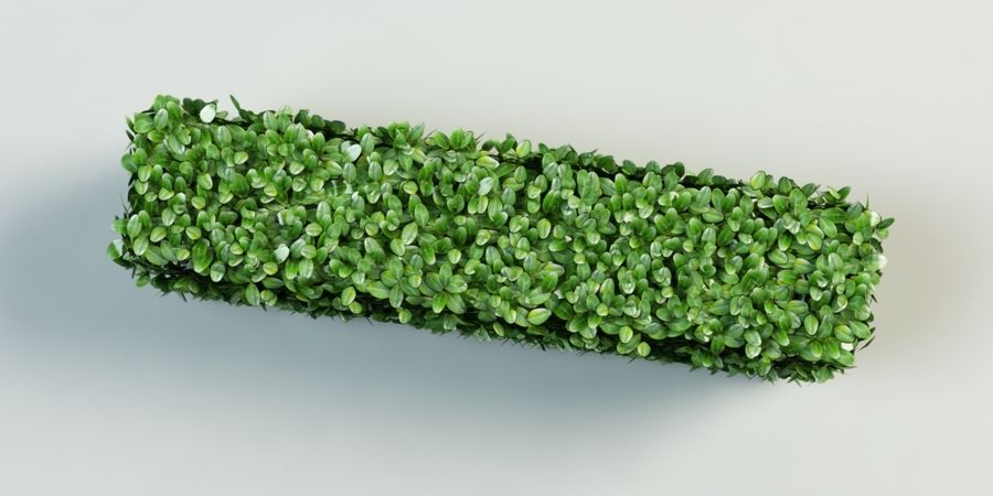 Hecke Topiary Busch royalty-free 3d model - Preview no. 6