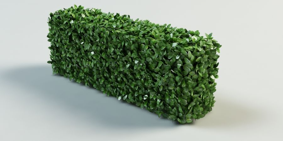 Hecke Topiary Busch royalty-free 3d model - Preview no. 1